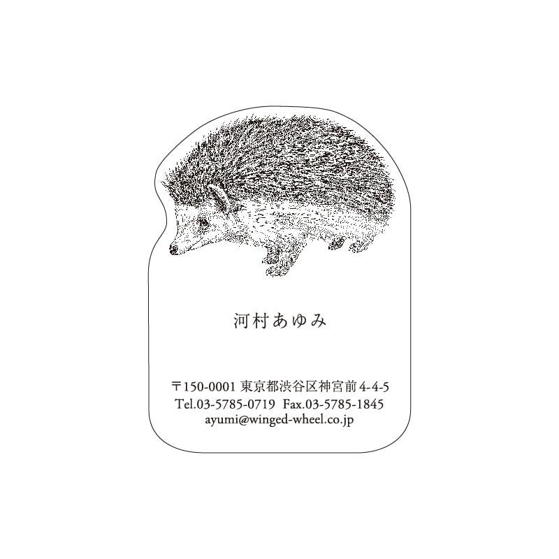 No.602 ハリネズミ ネームカードDC