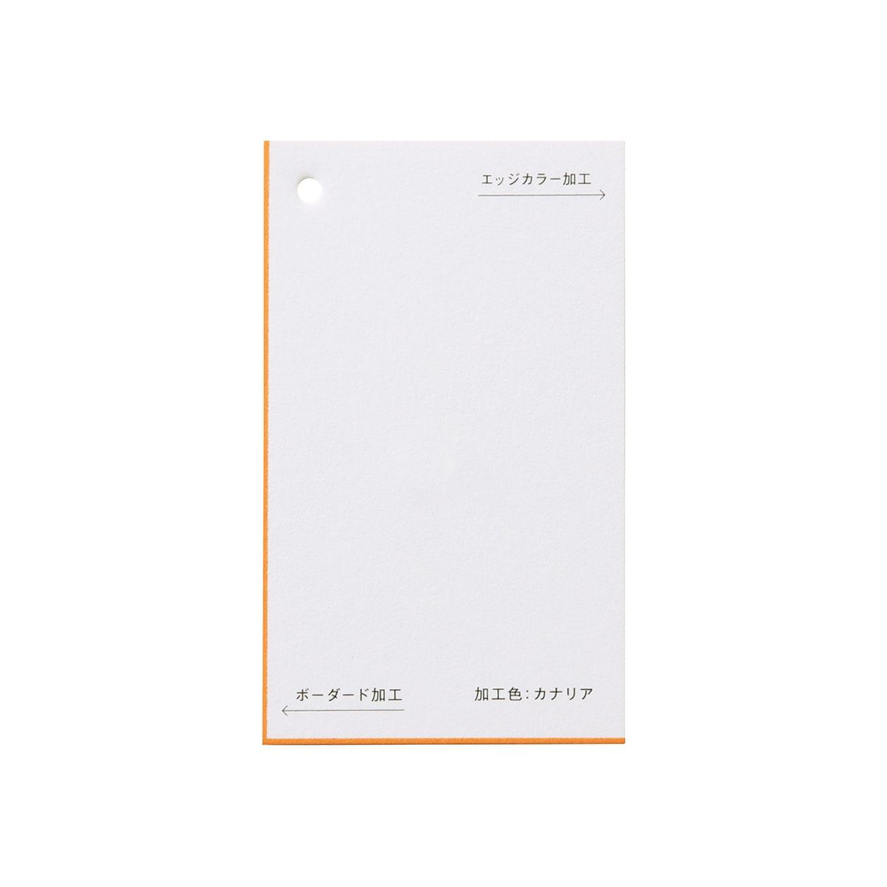 加工色見本 00149ボーダード・エッジカラー カナリアスノーホワイト 348.8g