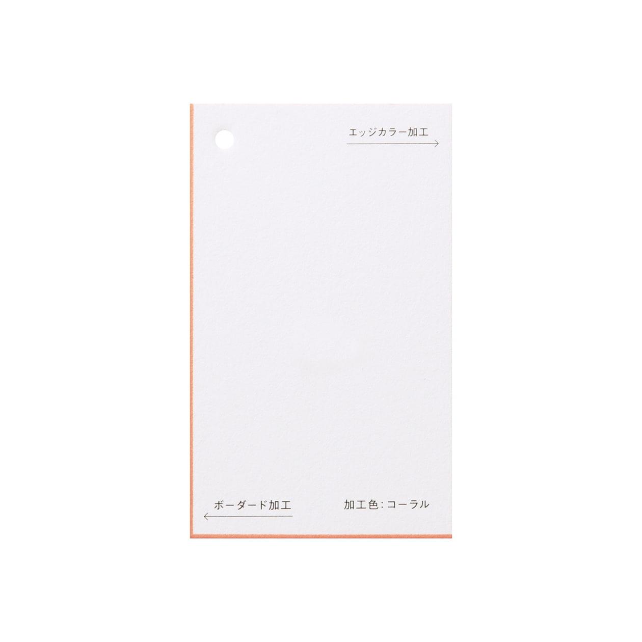 加工色見本 00154ボーダード・エッジカラー コーラルスノーホワイト 348.8g