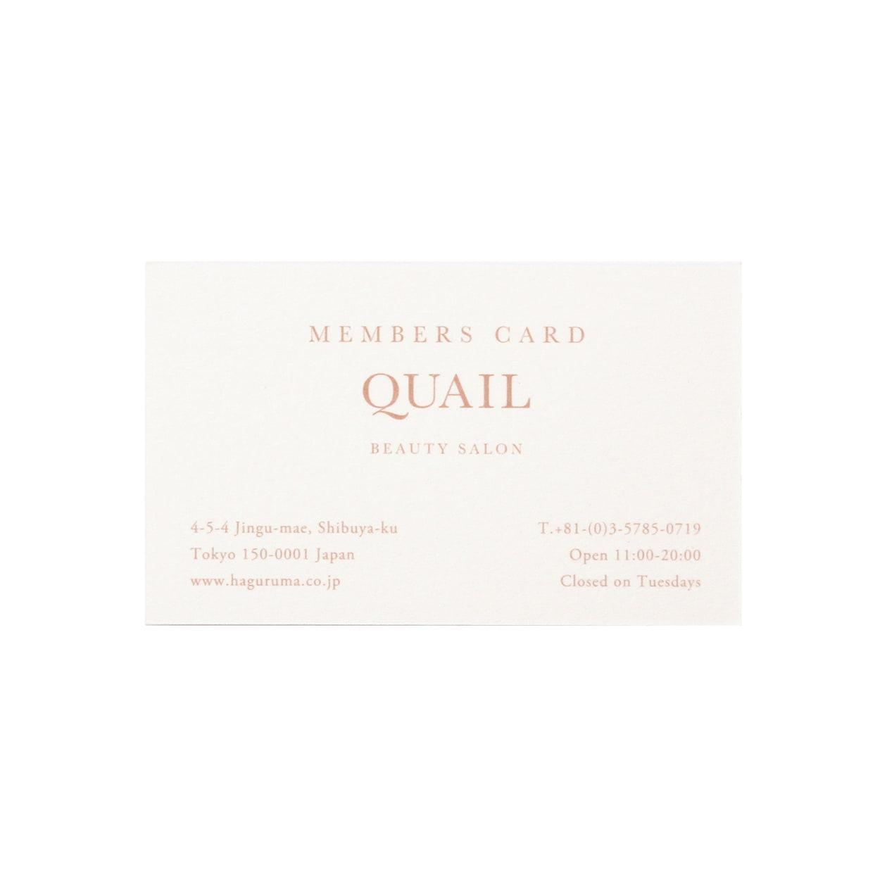 サンプル カード・シート 00223