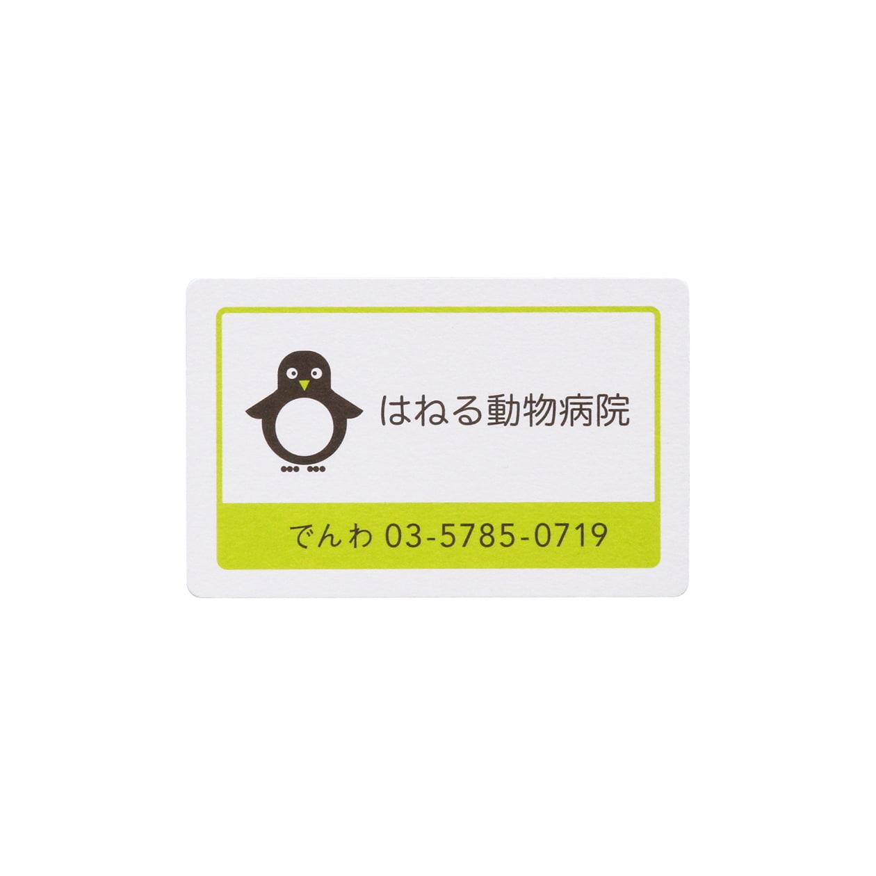 サンプル カード・シート 00247