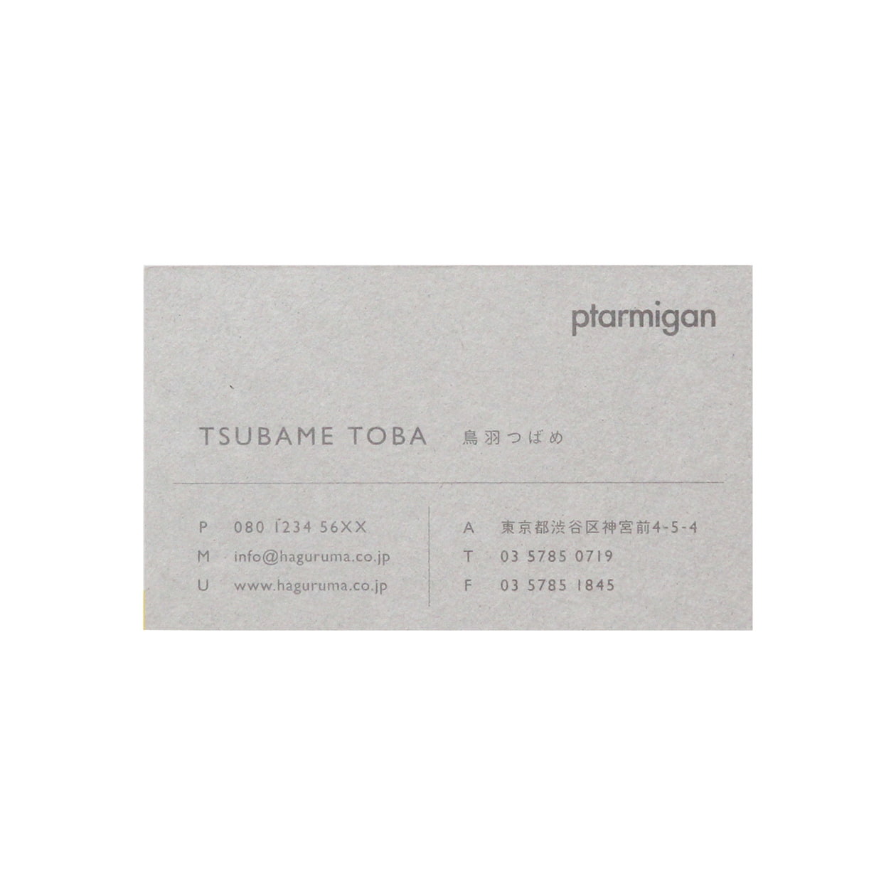 サンプル カード・シート 00355
