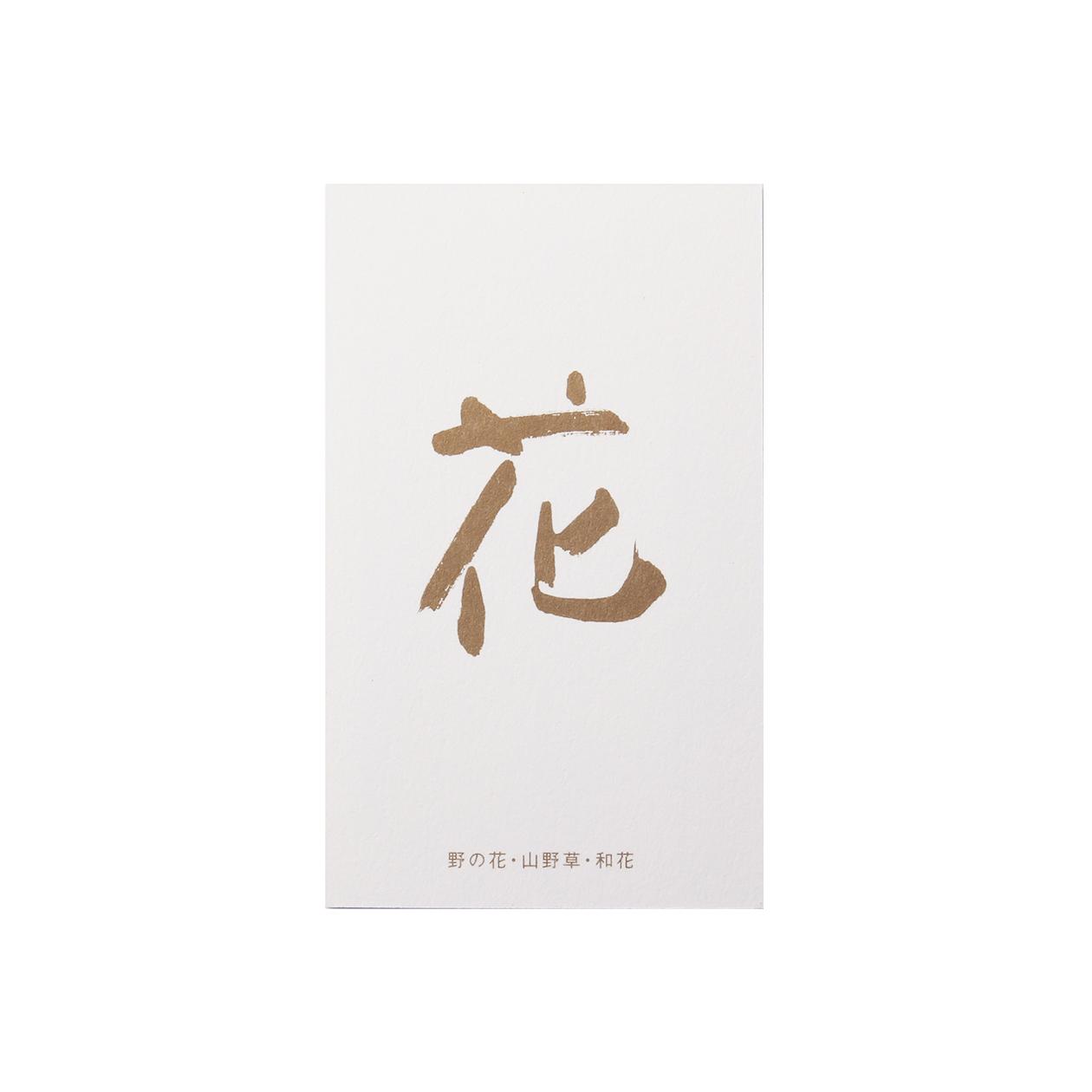 サンプル カード・シート 00413