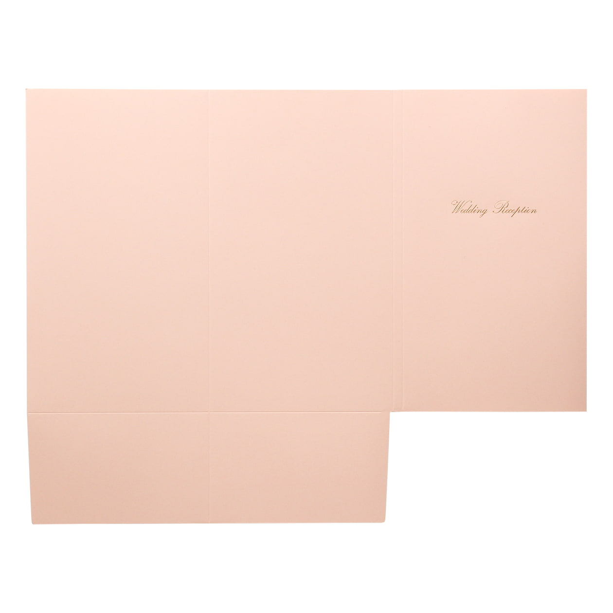 A31フォルダー Pale Pink タイトル 197.7g