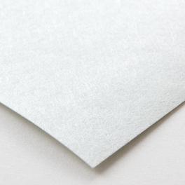 和紙プレーン