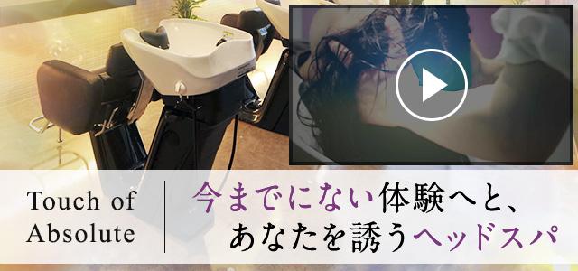 タッチ オブ アブソリュ(動画)