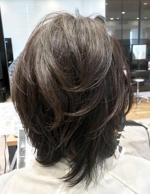 大人3Dカラー・白髪染め(SE245)