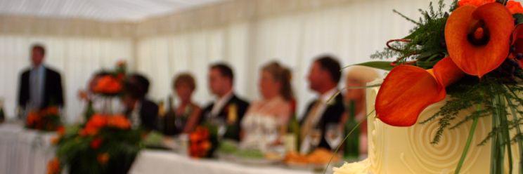 familywedding_speech