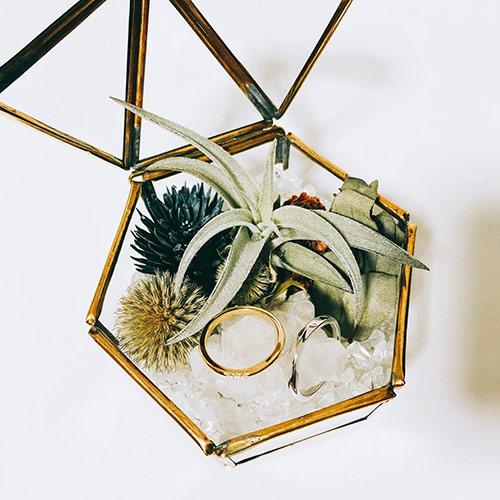 リングピロー ガラスケース×エアプランツ