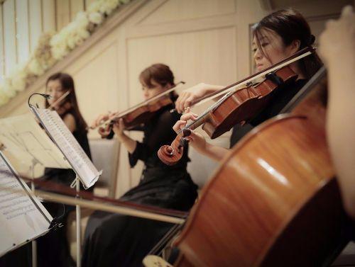 結婚式 音楽 生演奏 弦楽四重奏