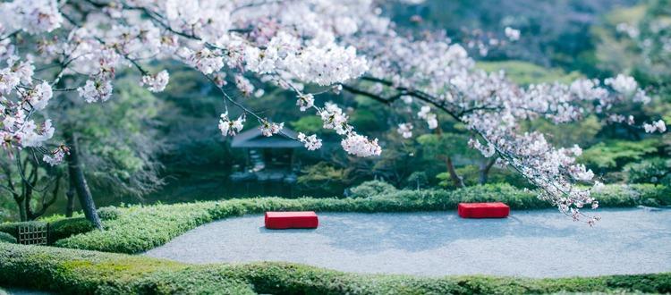 結婚式 日本庭園 八芳園
