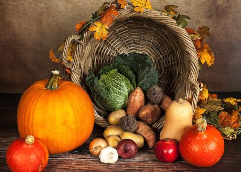 かぼちゃなどたくさんの野菜