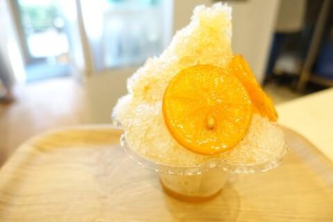 たんかん かき氷