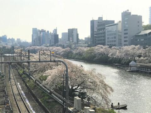 飯田橋ー総武線ー桜ー電車