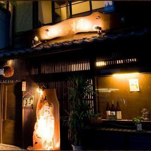kyoto-kaede