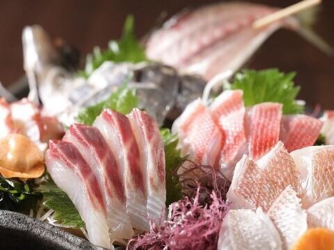 横浜 居酒屋 三浦鮮魚直売所 魚料理
