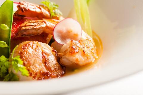 restaurant_naritayutaka_french