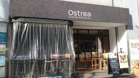 オストレア 六本木 おすすめ ランチ 洋食