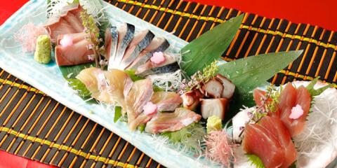 渋谷 ディナー 和食 KOiBUMi コイブミ 刺身