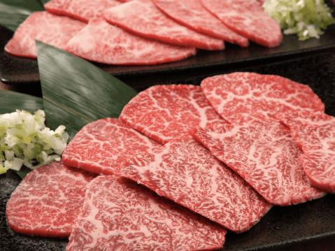 ホルモン焼道場 蔵立川南口店 おすすめ 焼肉