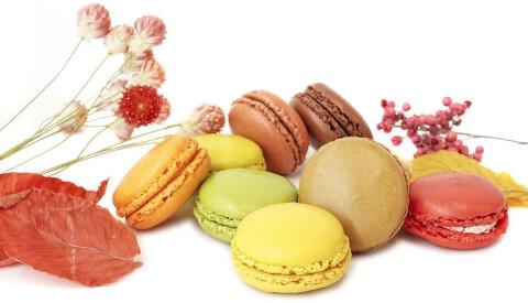 退職のギフトに人気のおしゃれなお菓子、ダイワイヨの季節のマカロン入り詰め合わせ