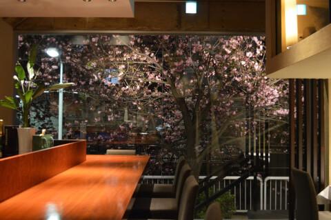 restaurant_nakameguro_naritayutaka