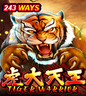 Games- Tiger Warrior