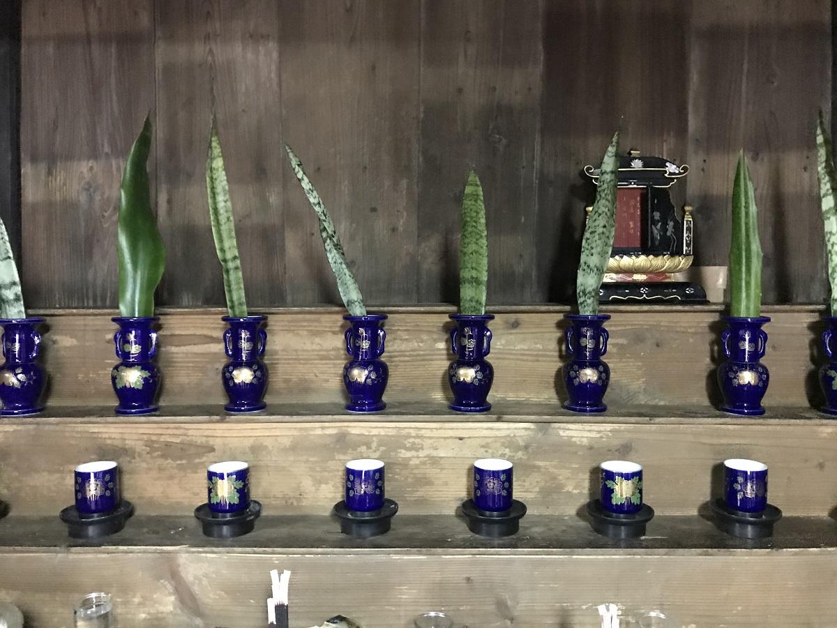 自然のなかで祈り、先祖に水を捧げる「ギーザバンタ」。受け継がれる沖縄の正月行事