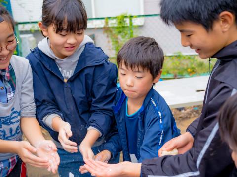 神奈川県 座間市 いよいよ春到来!葉物野菜の種まき祭り!