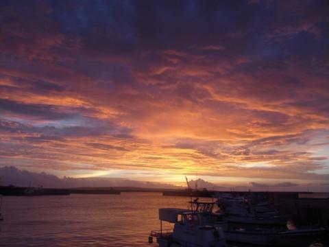 沖縄県 宮古島 ナイトダイビング水中ライト& GoPro無料レンタル!貸切ツアーで楽しむ!