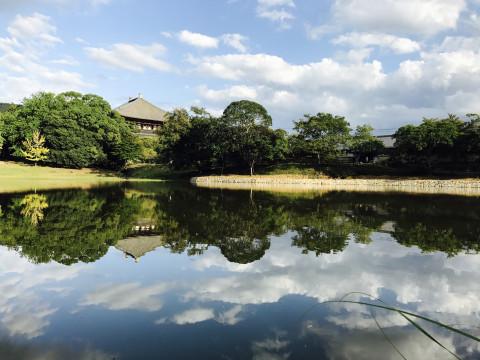 奈良県 奈良公園・ 不思議な乗り物で行く!『楽ちん子鹿&大仏ツアー』!!