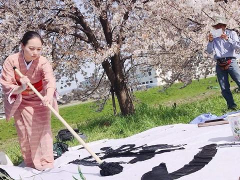 京都府 京都市中京区 日本文化体験 書道パフォーマンス(日本語・英語対応)