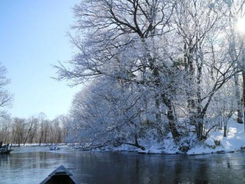 北海道 弟子屈町【2人様限定】冬到来! 釧路川源流 約3.5km カヌーとスノーシューを楽しむ ☆ プライベートツアー☆