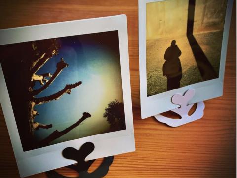 千葉県 我孫子市 〝チェキ〟片手に、白樺派の故郷徘徊ツアー
