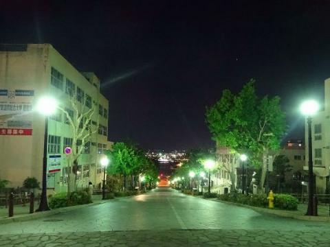 北海道 函館市 地元ガイドが案内する! ローカルネタ満載♪ 幻想に包まれる夕暮れとロマンチックな元町街歩きツアー☆