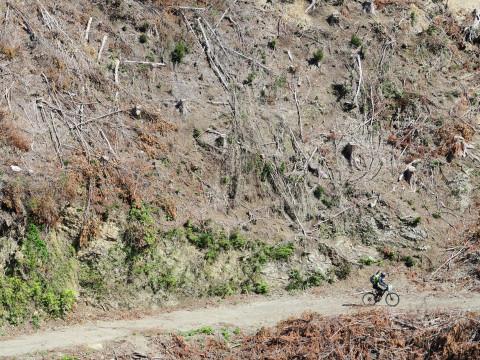 高知県 四万十市 <3人様以上限定プラン> 1日1組限定!サイクリングと四万十川をラフティングを同時に体験! バイクラフティングガイドツアー