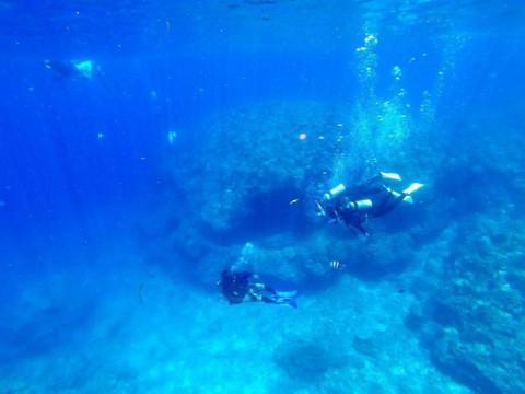 沖縄県 中頭郡 読谷村【超人気スポット!】 青の洞窟 体験ダイビング3時間☆