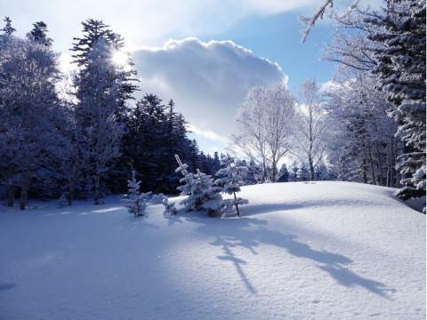 北海道 釧路市 阿寒湖温泉 エメラルドグリーンに染まる神秘の湖 ☆ オンネトーでスノーシュー トレッキング体験