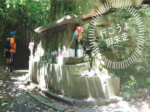 宮城県 松島町 御朱走松島ウォーキングツアー