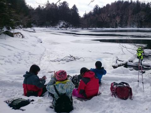 北海道 釧路市 阿寒湖温泉 雄阿寒岳の麓の原生林の中でのんびりとスノーシュー トレッキング体験