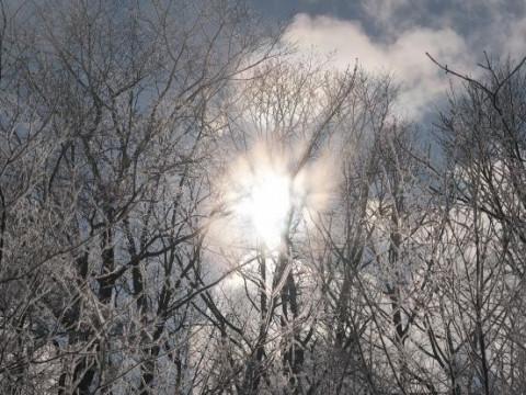 北海道 釧路市 阿寒湖温泉 冬限定 ☆ 阿寒湖氷上ウォーキング体験☆
