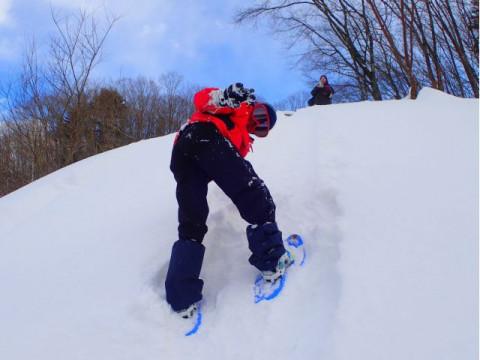 群馬県 みなかみ町 スノーシュー半日体験 ☆ 手軽に楽しめる雪上ハイキング! 小学生料金あり