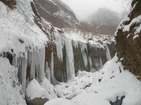 栃木県 日光市  雲竜渓谷アイスワールドツアー☆ 幅100mの氷壁や高さ10m以上の氷柱など見に行こう ♪