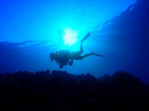 ☆一番やさしい青の洞窟体験ダイビング☆
