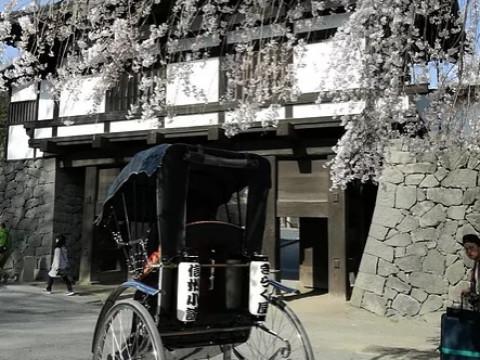 長野県 小諸市 城下町を人力車で周ろう ☆ 竹コース(町なか60分)城下町周遊プラン