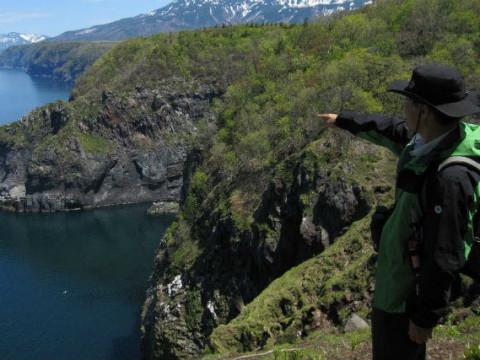 北海道 斜里町 【 1人様限定 】 知床の海と森、そして絶景を堪能 ☆ 原生林体験と知床半島望洋エコツアー