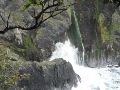 北海道 斜里町 【 2人様以上 】 フレペの滝と男の涙 ☆2つの滝を巡るエコツアー