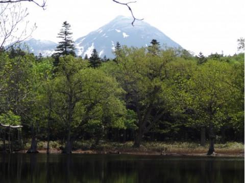 北海道 斜里町 【 1人様限定 】春に現れる! 幻のポンホロ沼 と ホロベツの滝ツアー
