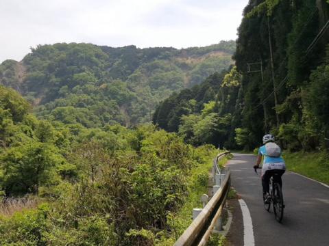 京都府 京田辺市【 京都で手ぶらでロードバイク体験】☆ 経験者は往復約40km・初心者の方は往復約30km