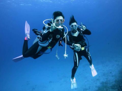 大阪市 福島区【体験ダイビング】 1人様から参加OK!和歌山県白浜で体験ダイビングプラン♪ 送迎&ランチ付き・初心者歓迎!